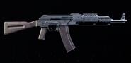 Tactical AKM TD2