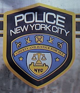 Fichier:The Division NYPD Logo.jpg