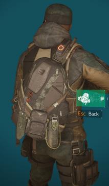HF2 bag