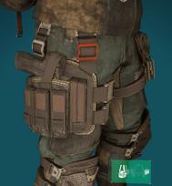 HF2 holster