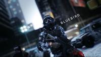 HVT SHD Agent Bluebird