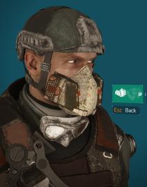 PM2 mask