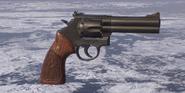 586 Magnum