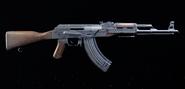 AK-M TD2