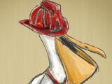 Crawford the Pelican