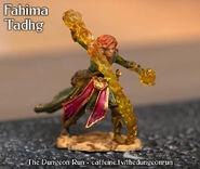 Dungeon Run Minis Fahima Tadhg