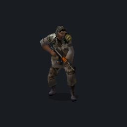AK74INGAMEPIC