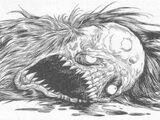 Skullpelts