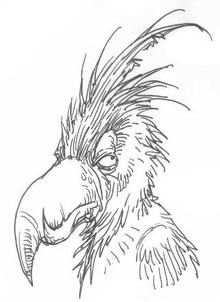CantationaryBird