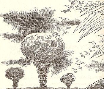 Stonegardens-midnightoversanctaphrax