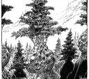 Sumpwoods