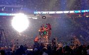 Professional wrestling ladder match