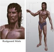 Redguard Male