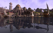 Online Sentinel docks