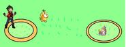 Psyduck vs Wurmple 5
