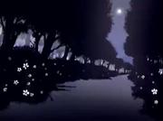Bosque de Held (Oso Iluminado por la Luna)
