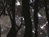 Moonlit Bear (story)