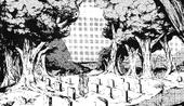 Cementerio de Yatski