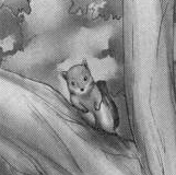 Gumillia (ardilla)