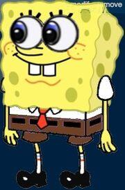 New Spongee