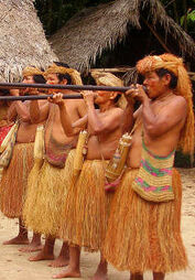 Native amazonian cultures