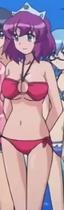 Henrietta bikini