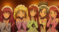 Charming Fairy waitresses