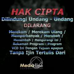 Medialine Entertainment (Warning 1)