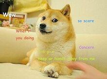 300px-Original Doge meme