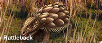 File:South american rattleback.png