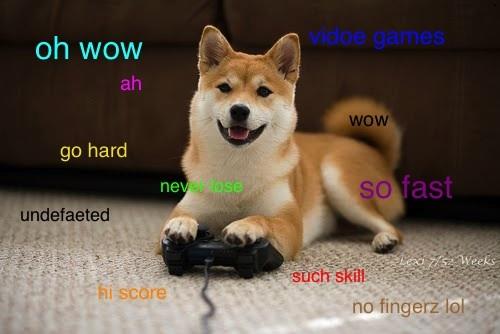 Doge Meme Original 6518