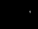 Zalic Language