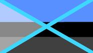 Random flag (leader flag)