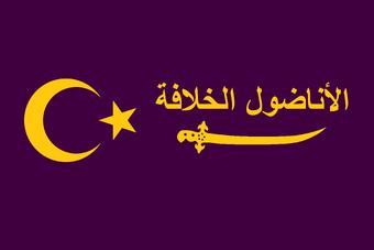 anatolian caliphate ile ilgili görsel sonucu