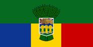 Flag of NCA
