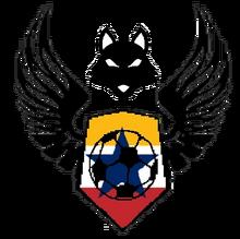 Kirarican Football team