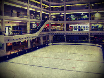 Arena1104