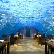 Ithaa-undersea-restaurant-hilton-maldives-xl