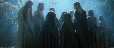 Galadriel and Fellowship