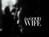 The Good Wife Seasons