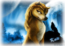 Kate-at-Moonlight-Howl-alpha-and-omega-20958068-1200-863