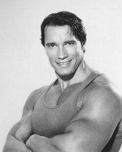 Arnie-V