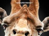 Alan's giraffe