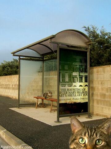 File:Funphotobox Bus Stop.jpg