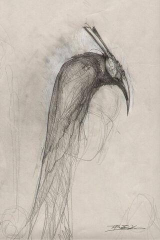 Raven Lord Art