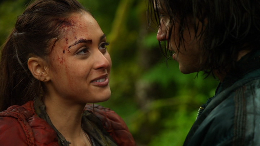 The 100 Finn And Raven