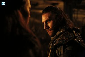 The 100 4x10 - Roan