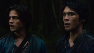 His Sister's Keeper 052 (Bellamy and Finn)