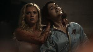The 48 007 (Clarke and Maya)