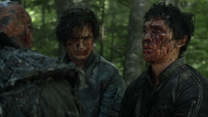 The 48 060 (Bellamy and Finn)